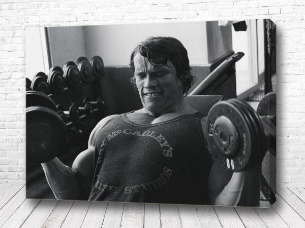 Постер Легендарный Шварценеггер