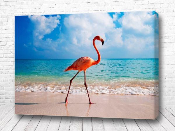 Постер Фламинго на берегу
