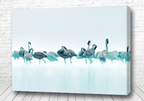 Постер Синие фламинго