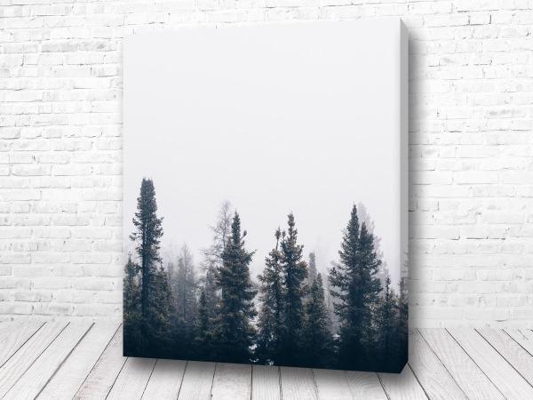 Постер Одинокий лес