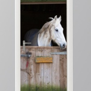 deursticker foto paard