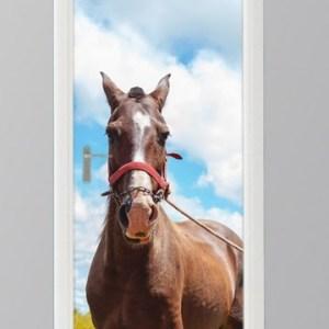 deursticker foto paard bruin