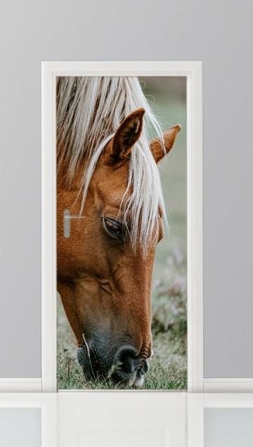 deursticker foto paard wei
