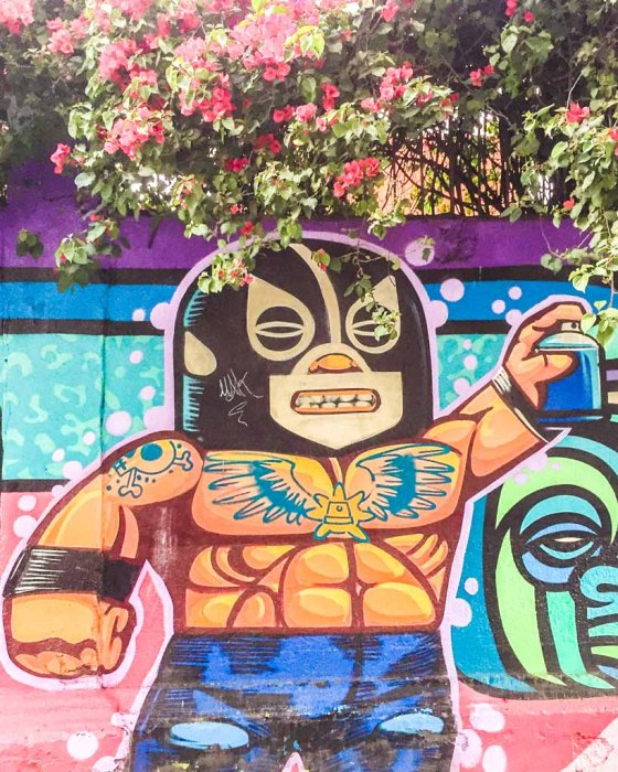 roma mexico city neighborhood guide
