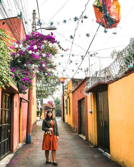 coyoacan mexico city neighborhood guide