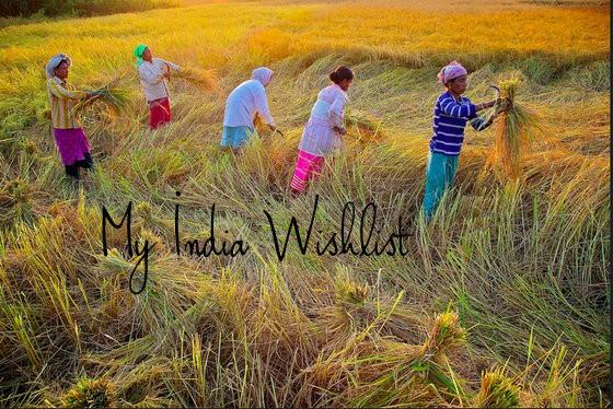 best cities in india wishlist