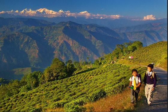 best cities in india wishlist darjeeling