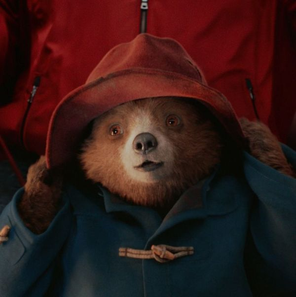 paddington bear film # 67