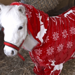 Horse Foursie Christmas Pajamas For Horses