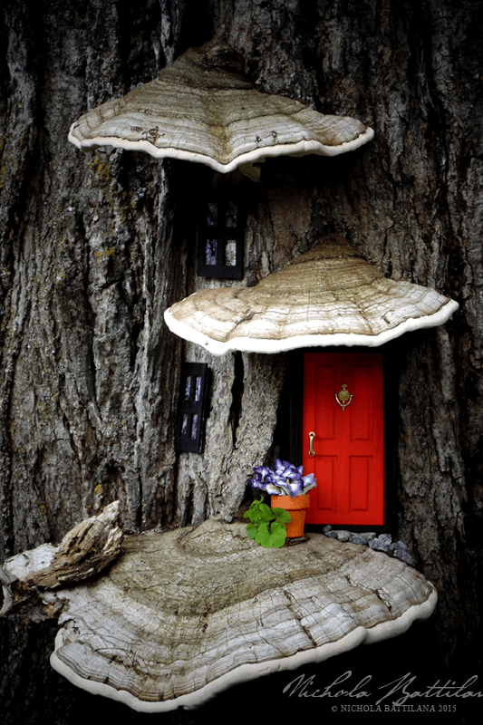 Fairy Garden Ideas: Curb Appeal