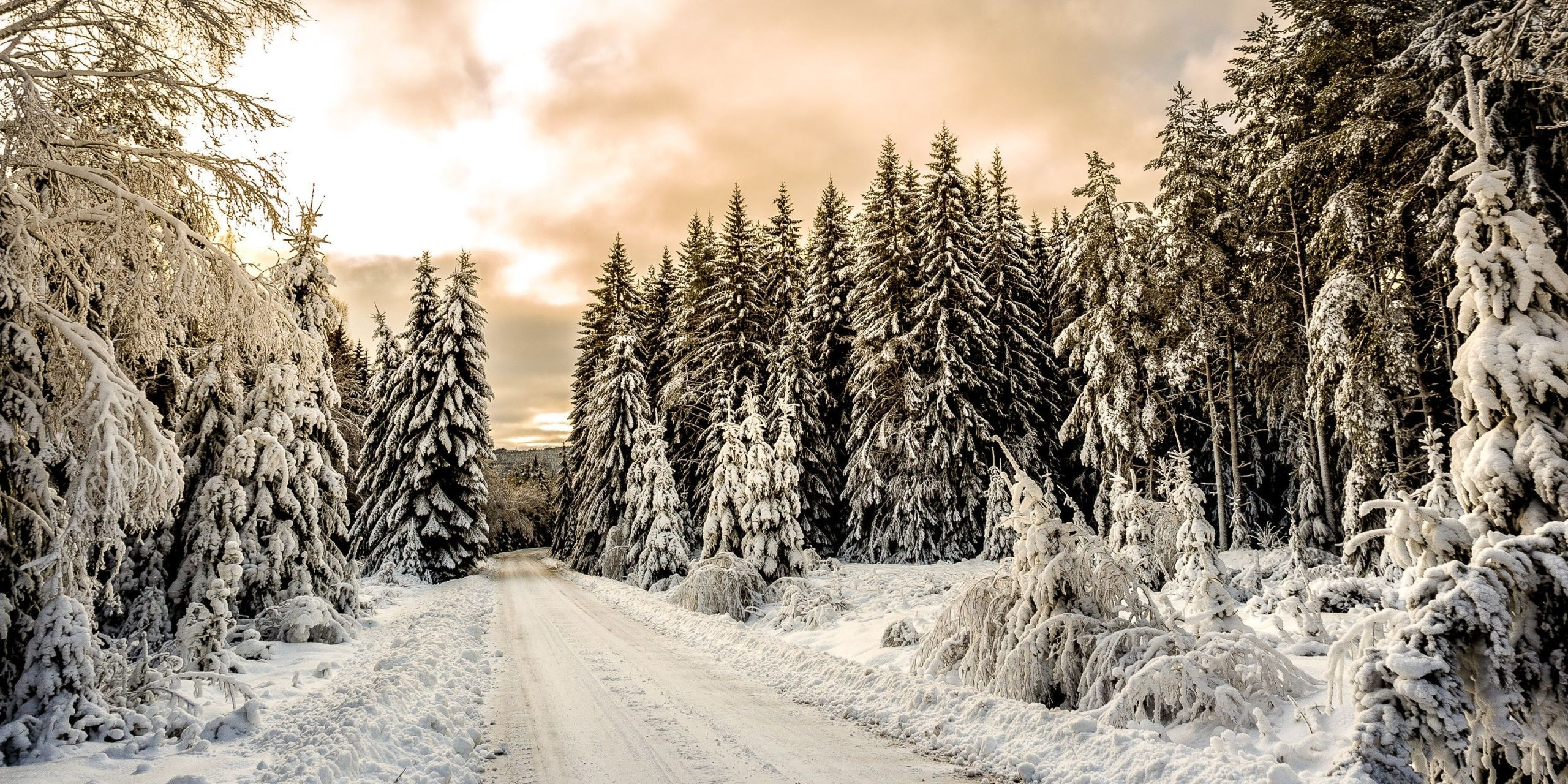 Winter Pictures Breathtaking Photos Of Winter Landscapes