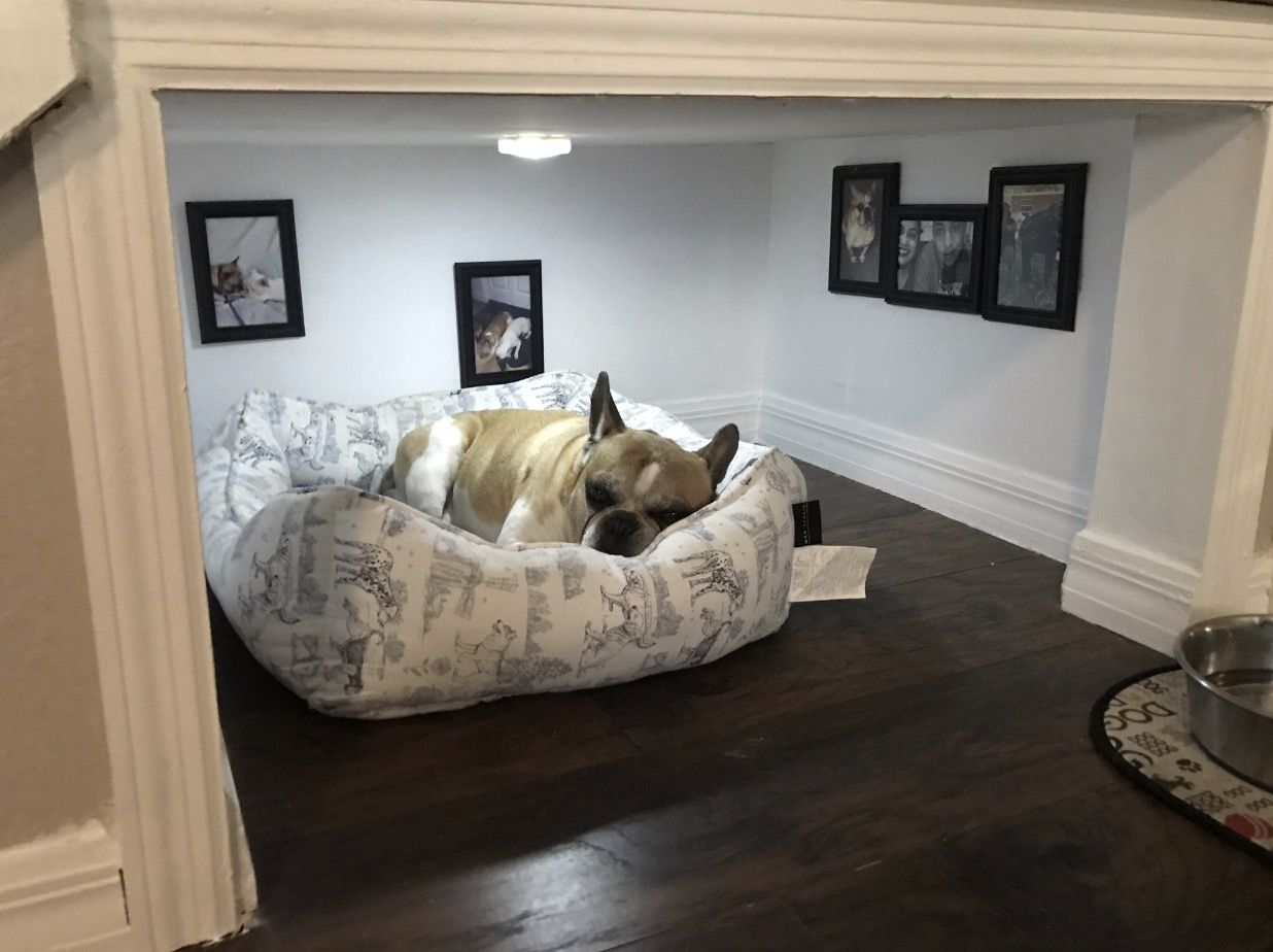 This Man Made A Whole Room Under The Stairs For His Dog