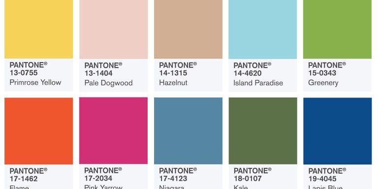 Pantone colour guide samples