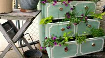 Stunning Shade Loving Plants Pallet Projects