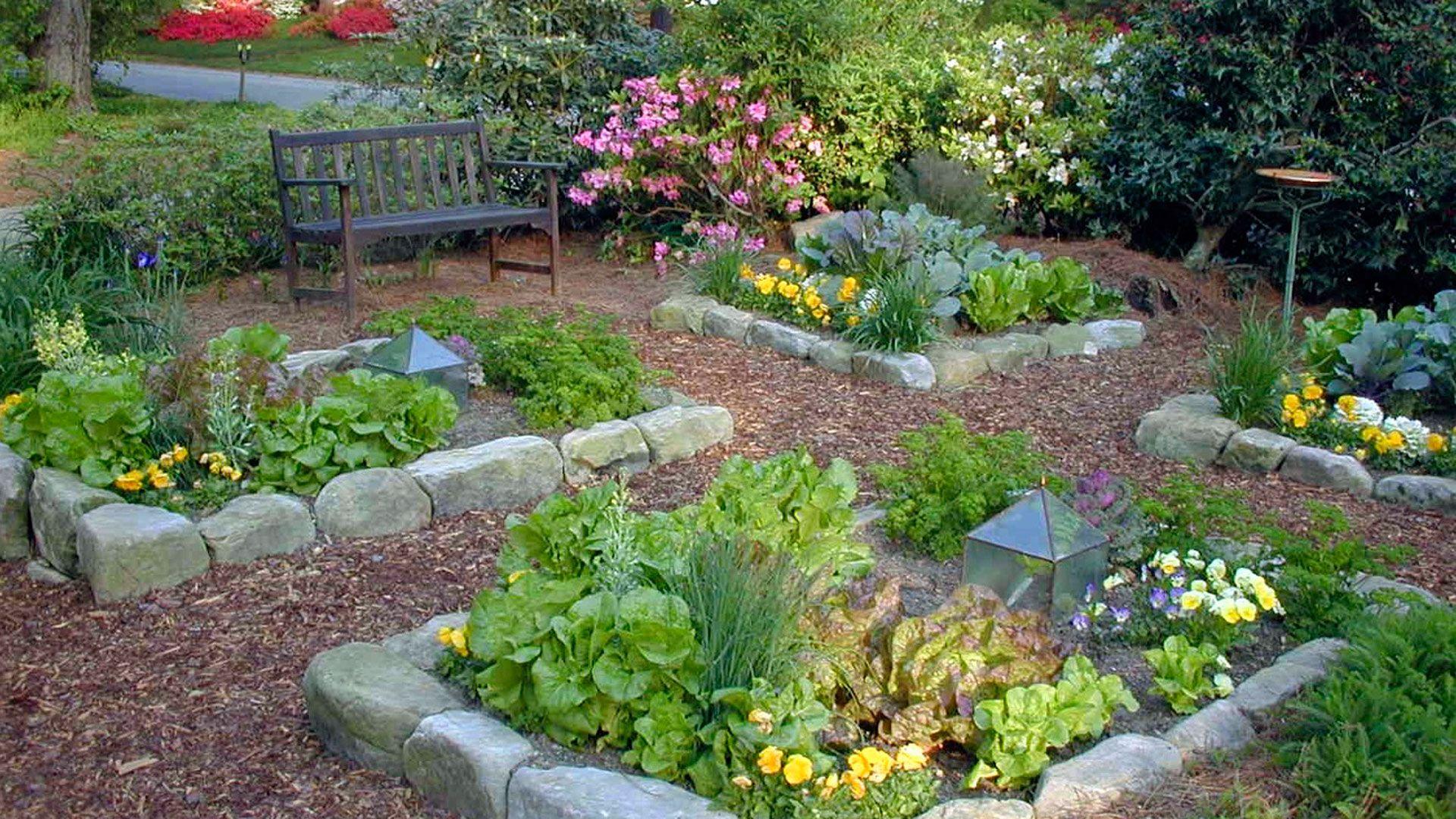 backyard oasis - beautiful