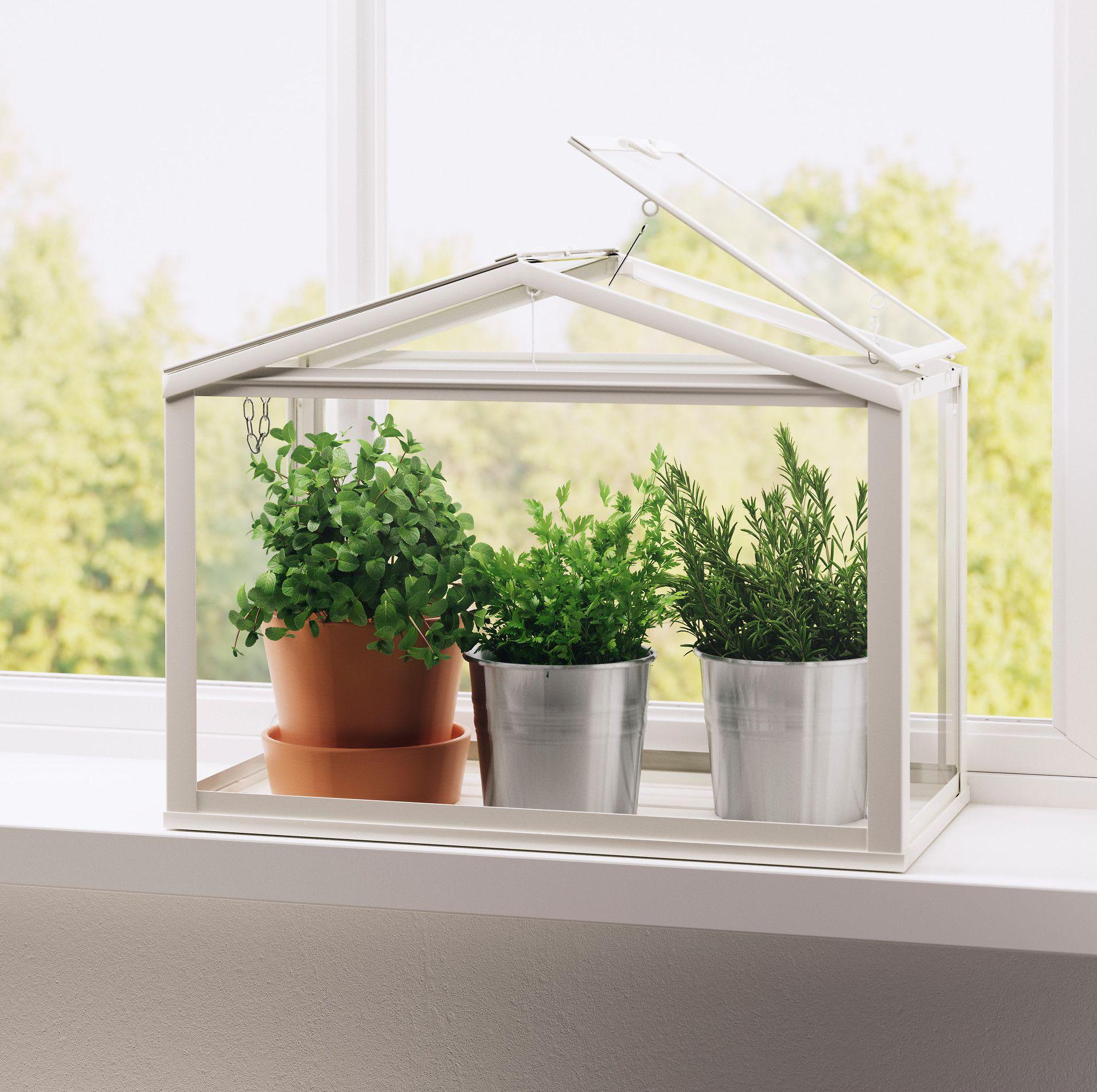 kitchen herb kit shabby chic decor 17 indoor garden ideas - planters