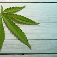 James Donaldson on CBD Oil and Benefits - CBD Oil and MS: Can Cannabidiol Alleviate Multiple Sclerosis Symptoms?