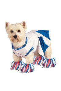 32 Cute Pet Costumes for Dogs & Cats - Best Halloween Pet ...