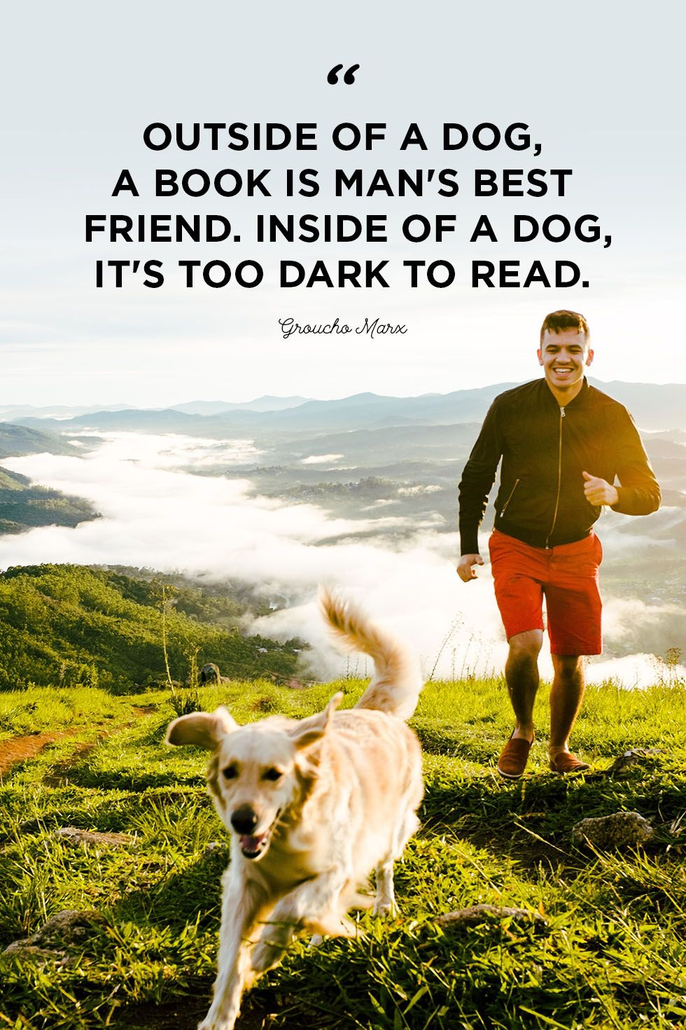 Man's Best Friend Quotes : man's, friend, quotes, Quotes, Cute,, Sweet, About