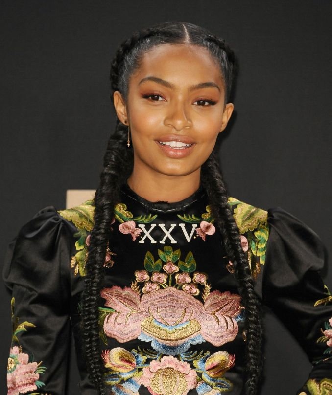 braids and twists 2019 - 14 hairstyles from crochet and box