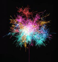 diagram of inside firework [ 1642 x 1825 Pixel ]