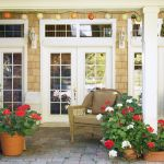 The 20 Best Patio Plants To Make Your Home Look Even Happier