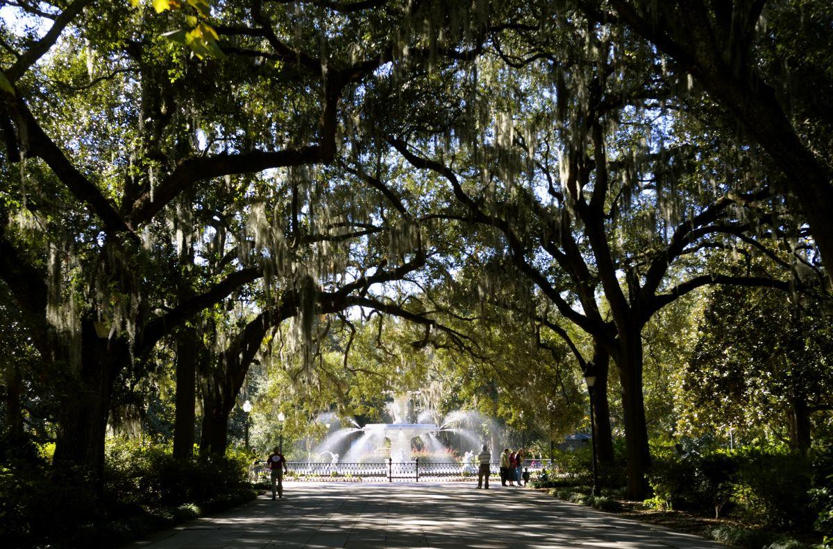 usa, georgia, savannah, historic district, forsyth park