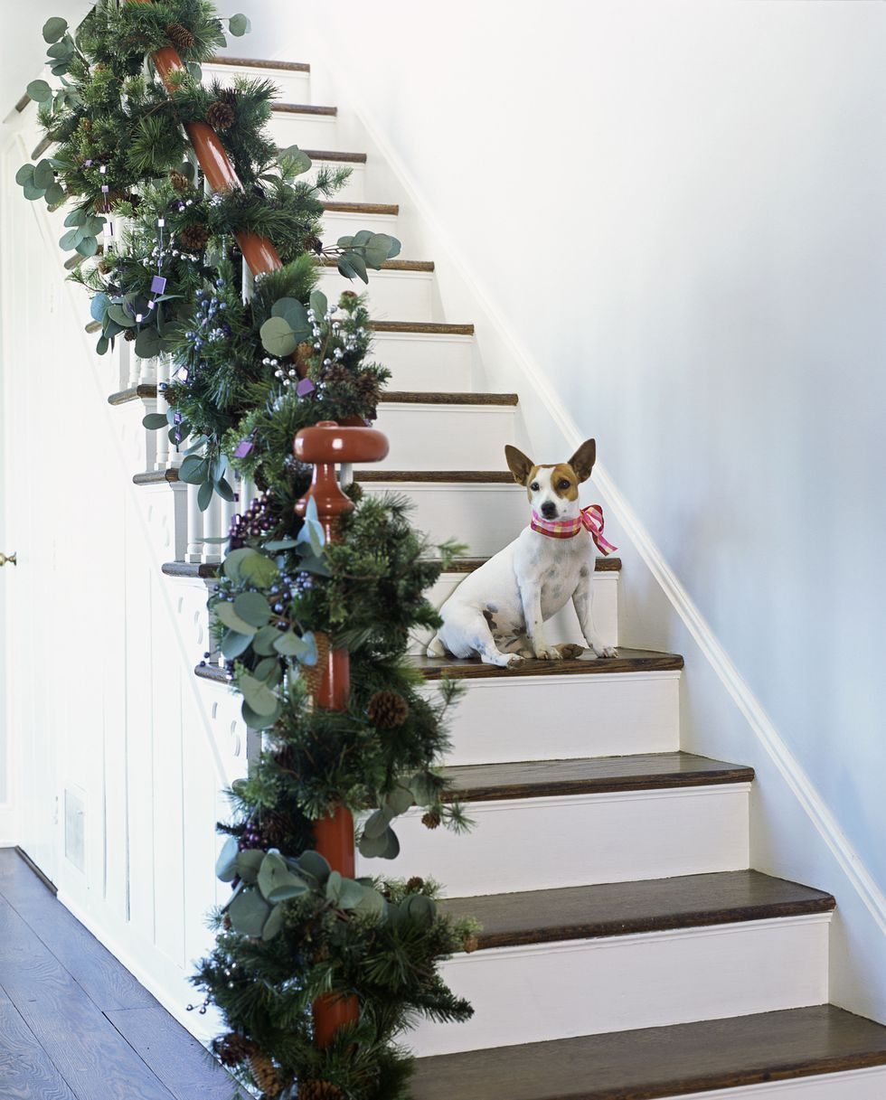 15 Best Christmas Staircase Decorating Ideas Xmas Stair Decor 2019