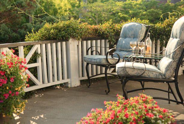 15 best balcony plants apartment