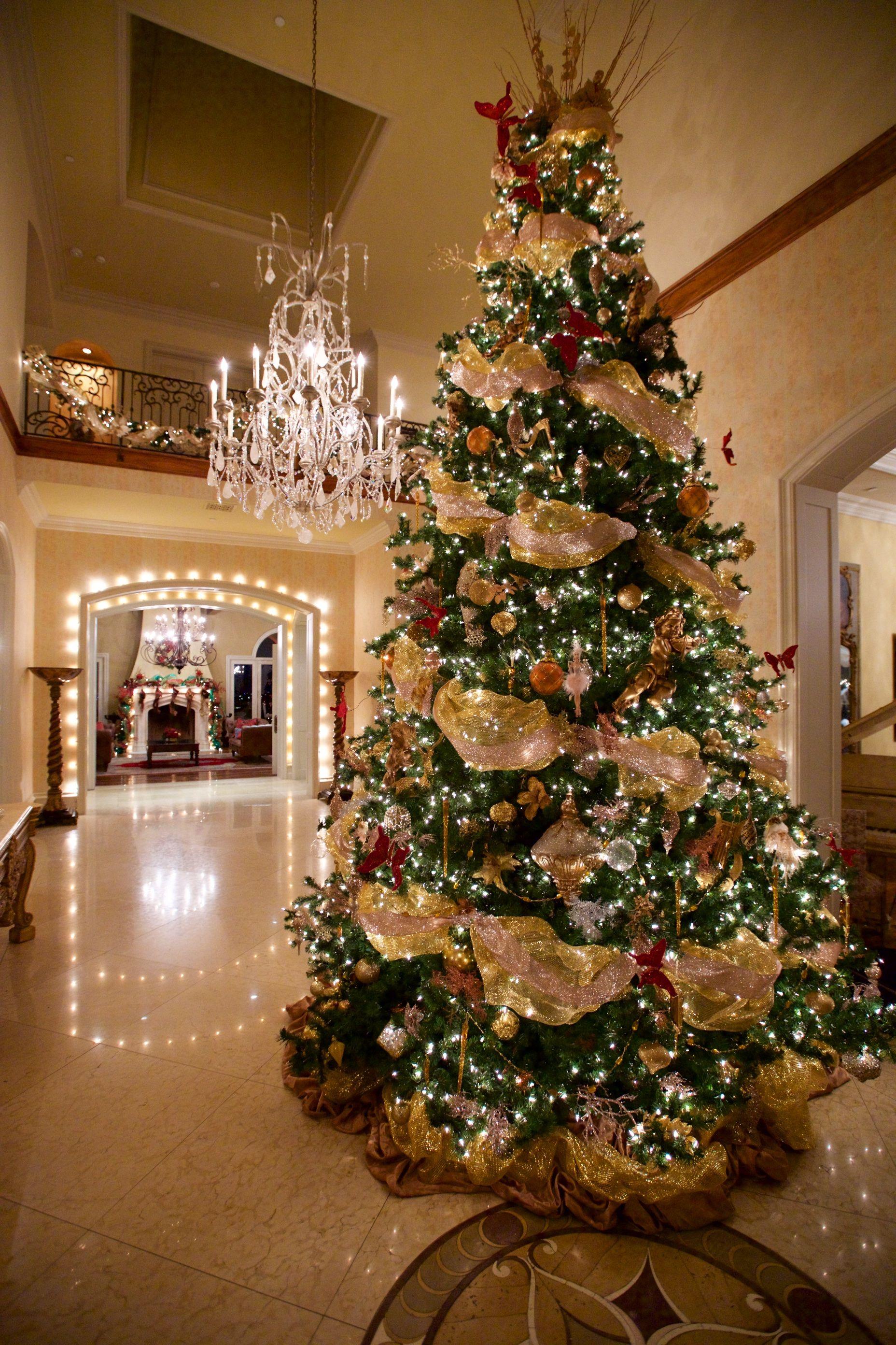 Tree Top Ornaments Christmas Trees