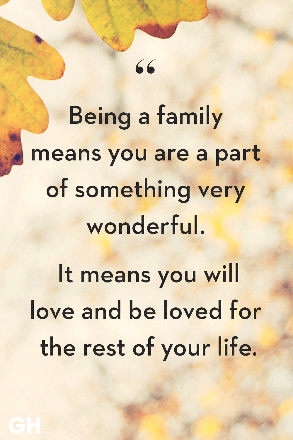 40 family quotes short