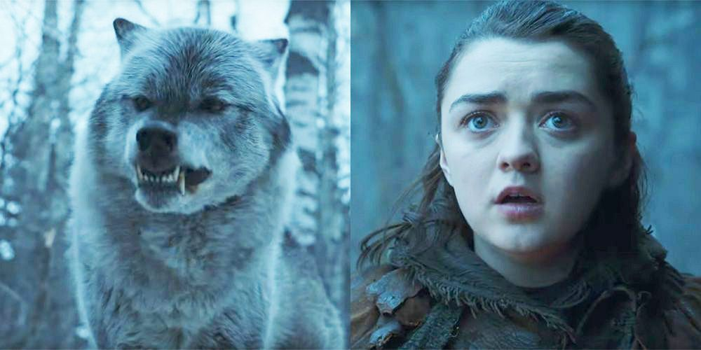 nymeria and arya game of thrones