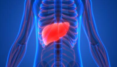 liver cancer alcohol