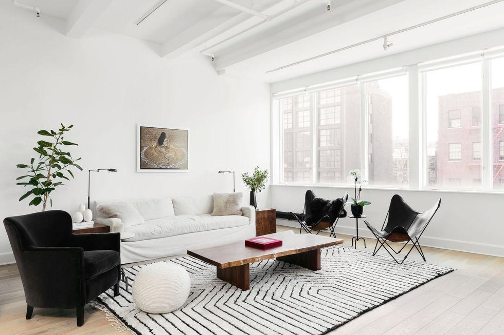 15 Best Indoor Plants For Apartments Low Maintenance