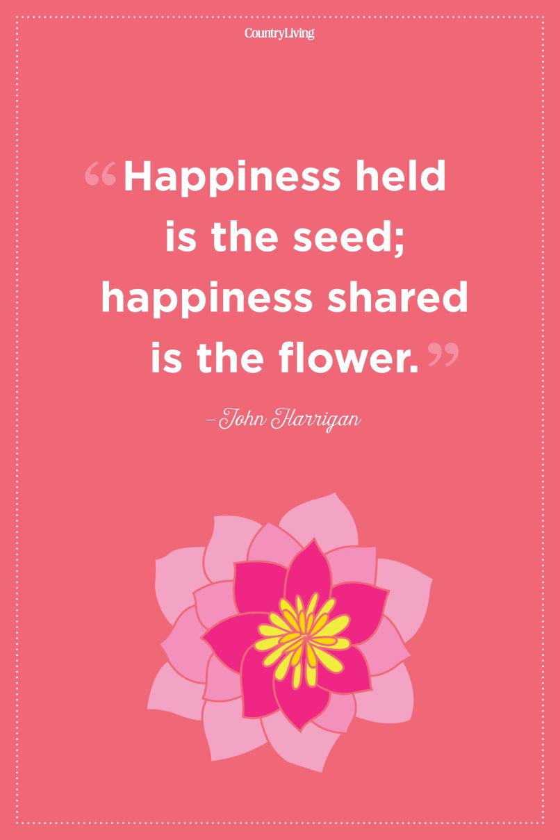 Quotes About Flowers In Your Hair Wajiflower