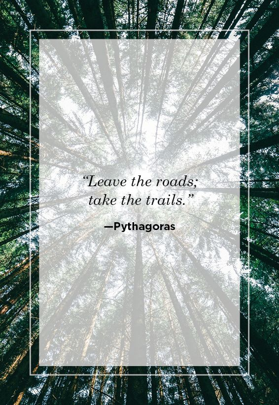 Sayings About Nature : sayings, about, nature, Nature, Quotes, Inspirational, Sayings, About