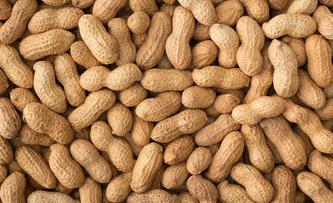 Growing Peanuts Is Actually Really Easy How To Plant Peanuts In Containers
