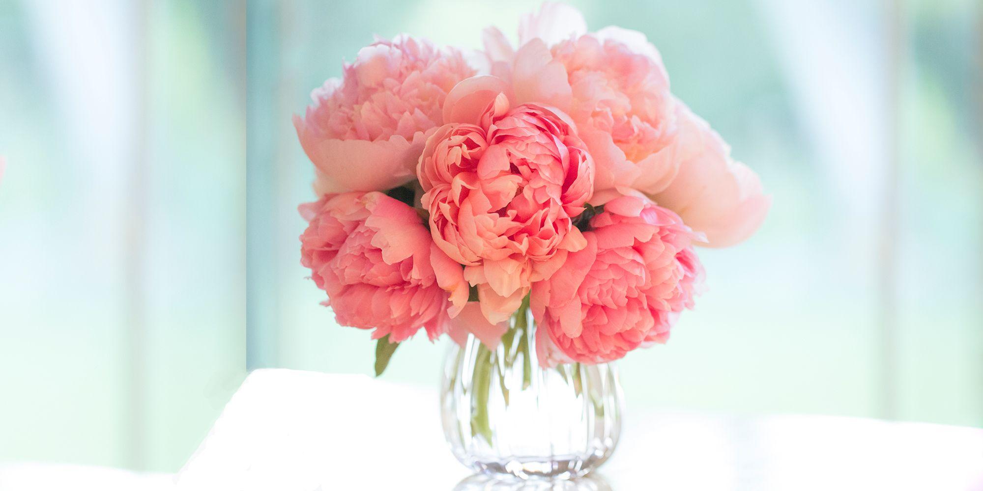 Fresh Beauty Rose Deep Hydration
