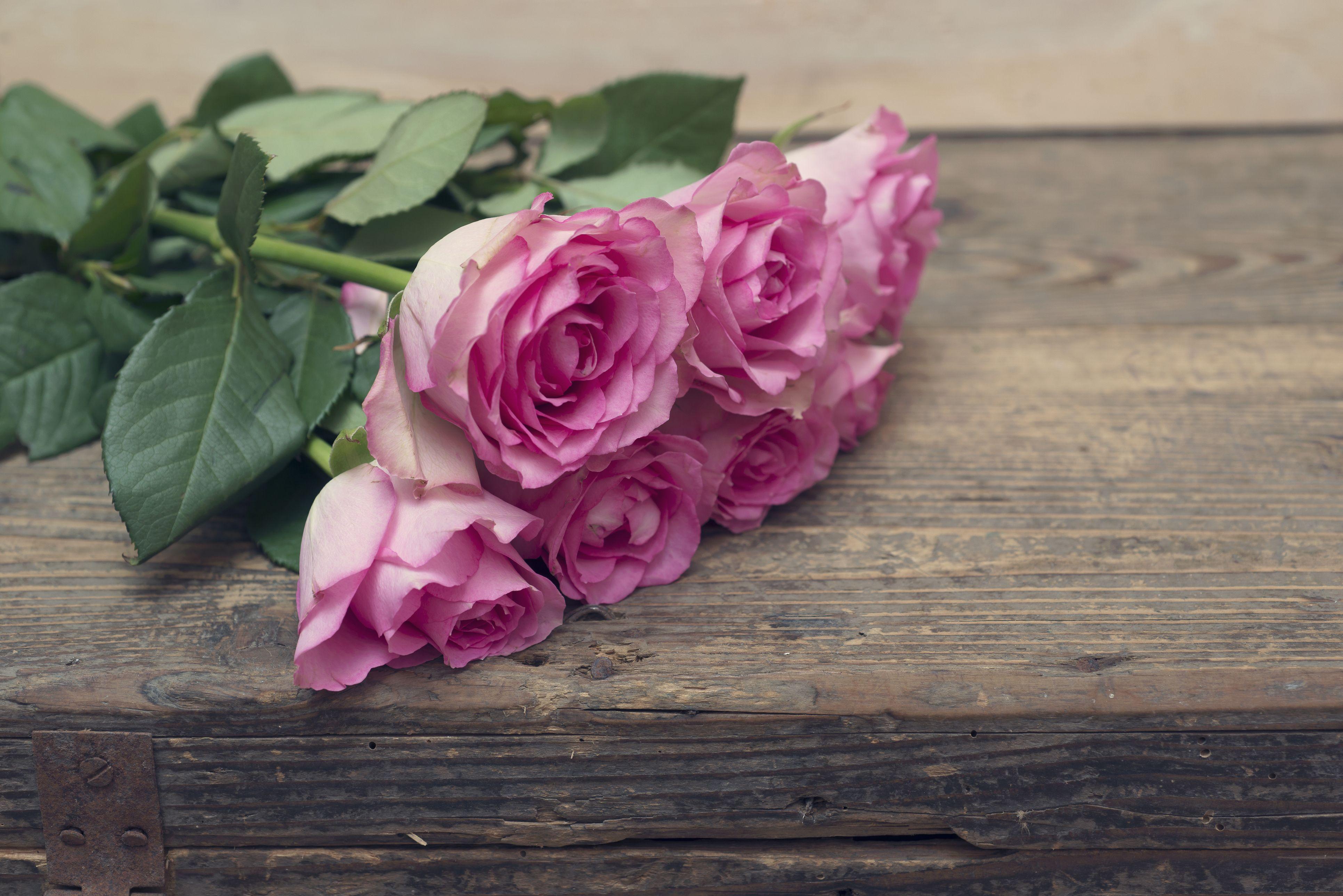 16 romantic flower meanings