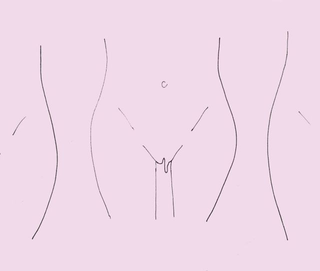 Is Your Vagina Normal Here Are The 7 Different Types Of Labia