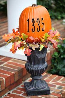 Pumpkin, Orange, Leaf, Plant, Thanksgiving, Fruit, Calabaza, Carving, Centrepiece, Flower,