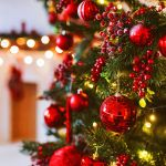 Common Christmas Tree Bugs How To Get Rid Of Christmas Tree Bugs