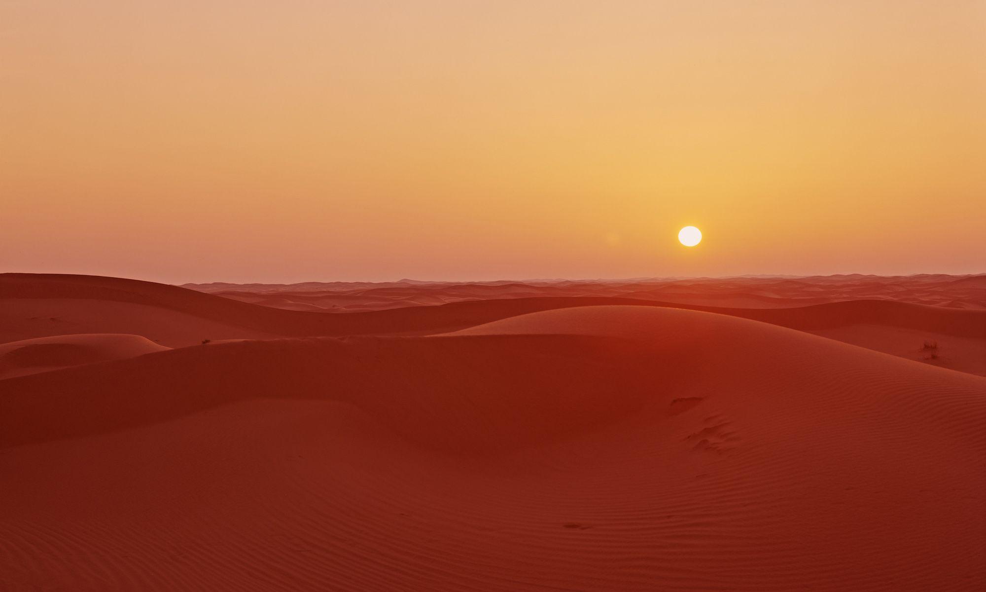 Saharan Twilight