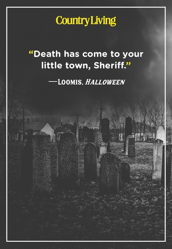 Funny Suicidal Quotes : funny, suicidal, quotes, Scary, Quotes, Creepy, Sayings, About, Eerie, Things