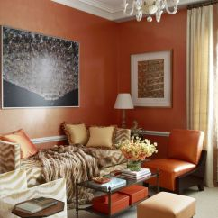 Orange Living Room Decorating Ideas Glass Shelves For Best Small Design Decor Inspiration