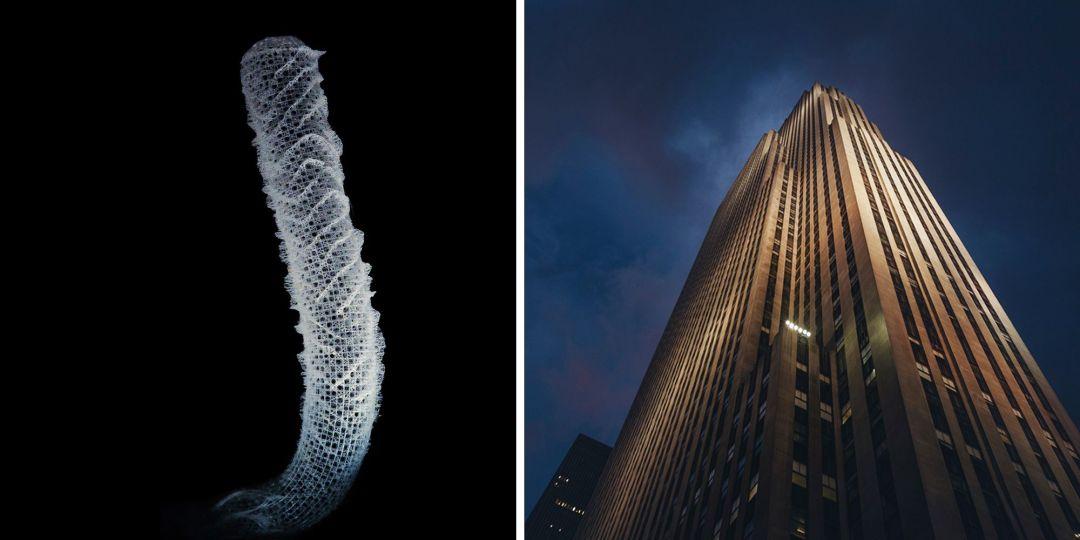 marine sponge inspires skyscraper construction