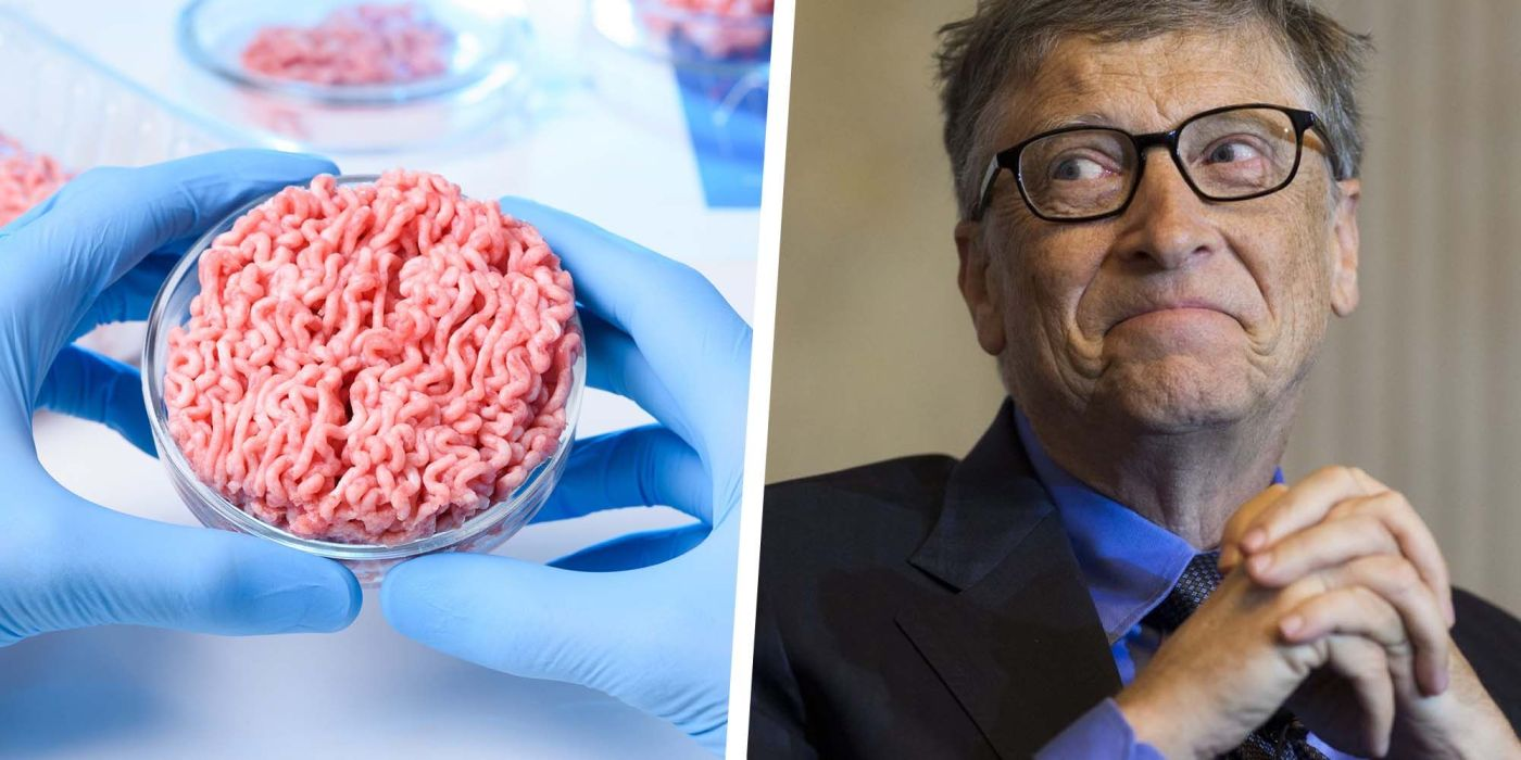 Bill Gates Says Rich Countries Should Eat 100% Synthetic Beef