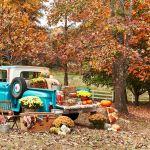 51 Easy Thanksgiving Decorations Diy Festive Thanksgiving Decor