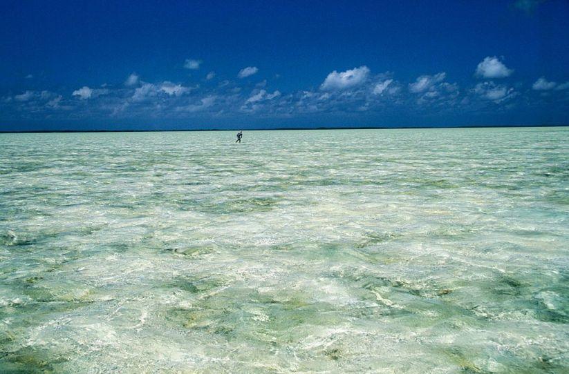 Bahamas - Acklins Island - Man flyfishing bonefish in the shallow waters of a lagoon