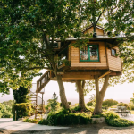 32 Amazing Treehouses You Can Rent In 2020 Best Tree House Vacations